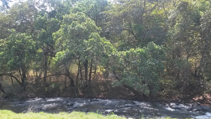 The river at Kwambali