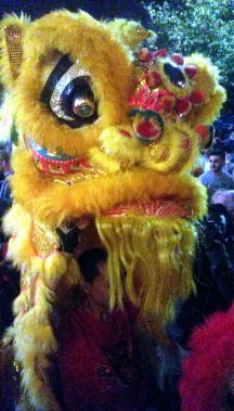 The Lion from the Lion Dance