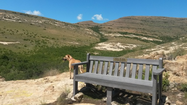 A secluded bench to enjoy the views inside the Nature Reserve
