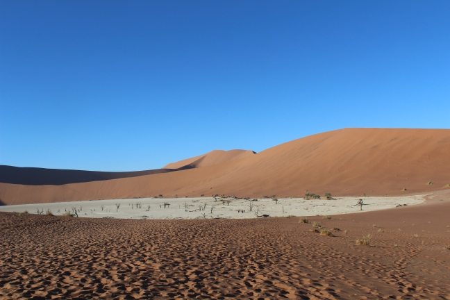 View of the deadvlei and the pan